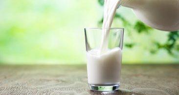 Sütün Faydaları Kısaca