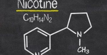 Nikotin Nedir? Zararları ve Böcek İlacı Olarak Kullanımı