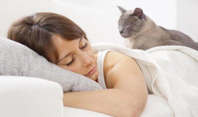 Kızılırmak ve Yeşilırmak Nerededir? Kızılırmak ve Yeşilırmak Hakkında Her Şey 10 – iyi uyku nasil alinir 1