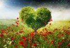Yeşil ve Ağaç Sevgisi
