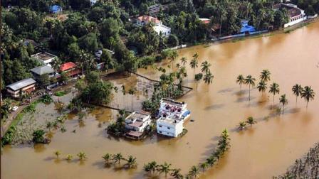 Sel Baskınları, Zararları ve Korunma Yolları