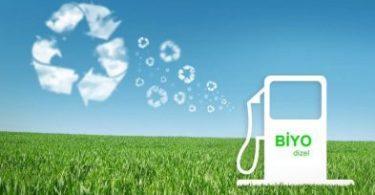 Biyodizel Yakıt Nedir? Nasıl Üretilir ve Nerelerde Kullanılır?