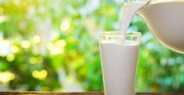 Süt Çok Faydalı Ama Aşırı Tüketilirse Bakın Neler Oluyor