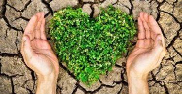 Ülkemizdeki Gönüllü Çevreci Kuruluşlar