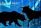 Finansal Piyasalarda Ayı Piyasası Nedir?