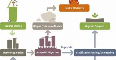 Biyogaz Nedir? Oluşumu ve Kullanım Alanları
