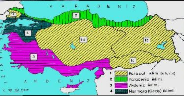 Karadeniz iklimi ve Özellikleri Liste Halinde