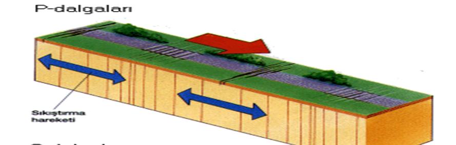 Deprem Dalgaları Nedir? Özellikleri Nelerdir? 1 – image 18