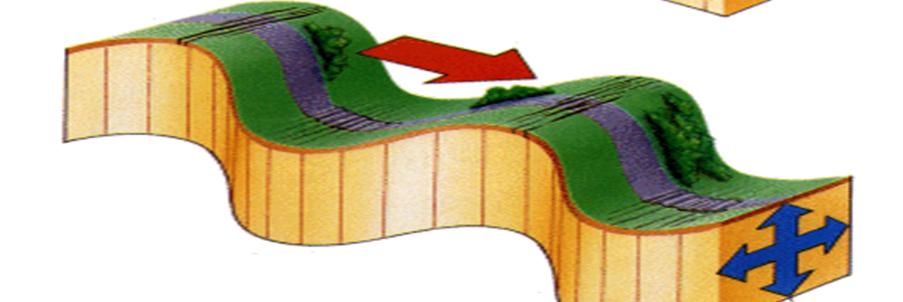 Deprem Dalgaları Nedir? Özellikleri Nelerdir? 2 – image 19