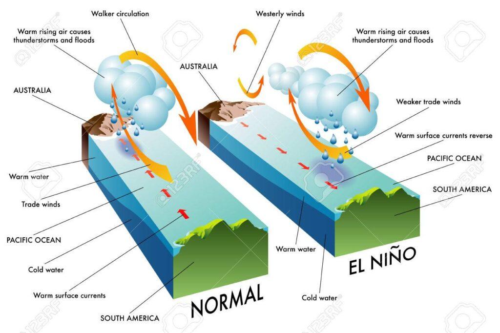 El Nino Nedir? Nasıl Oluşur? 3 – el nino evresi