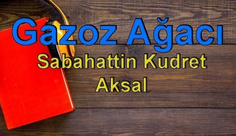 Sabahattin Kudret Aksal-Gazoz Ağacı Sesli Kitap Dinle 1 – gazoz ağacı sabahattin