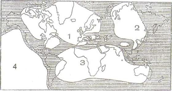 Birinci Jeolojik Zaman (Paleozoik) 6 – image 16
