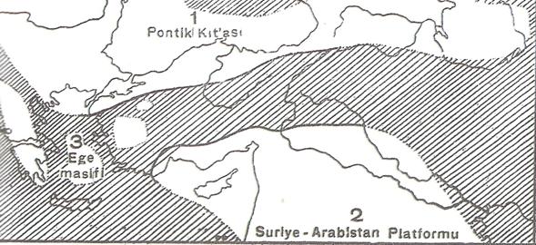 Birinci Jeolojik Zaman (Paleozoik) 7 – image 17