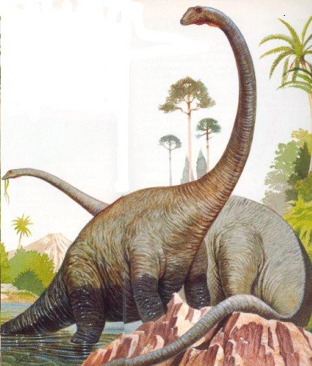 İkinci Jeolojik Zaman (Mezozoik) 3 – image 21