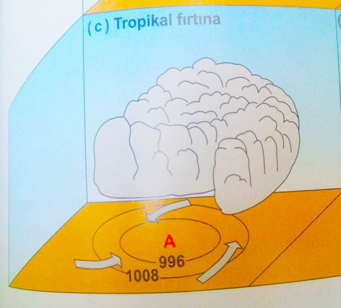 Tropikal Siklon (Kasırga) Nedir? İklim Değişikliğinin Etkisi. 5 – image 71