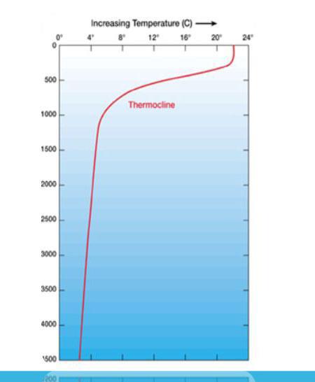 Tropikal Siklon (Kasırga) Nedir? İklim Değişikliğinin Etkisi. 10 – image 76