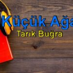 Tarık Buğra-Küçük Ağa Sesli Kitap Dinle