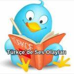 Türkçe'de Ses Olayları Nelerdir?