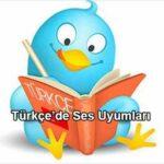 Türkçe'de Ses Uyumları