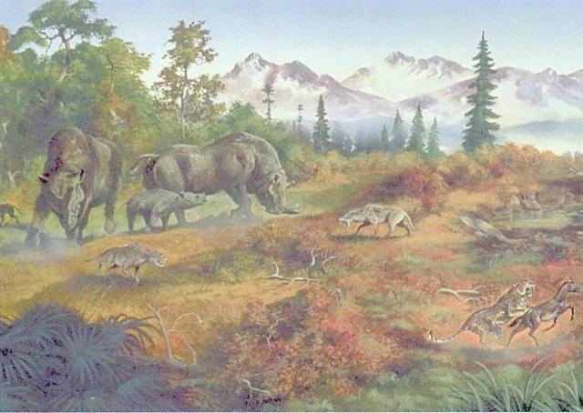 Üçüncü Jeolojik Zaman (Tersiyer) 2 – tersiyer