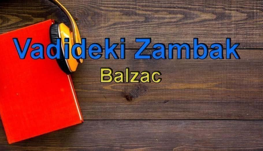 Balzac-Vadideki Zambak Sesli Kitap Dinle 11 – vadideki zambak balzac