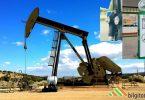 Petrol Nedir? Tarihi, Önemi ve Kimyasal Oluşumu