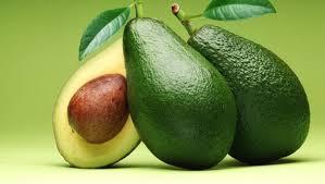 Avokado Yetiştiriciliği Bakım ve Toprak İşleri 1 – avokado meyvesi