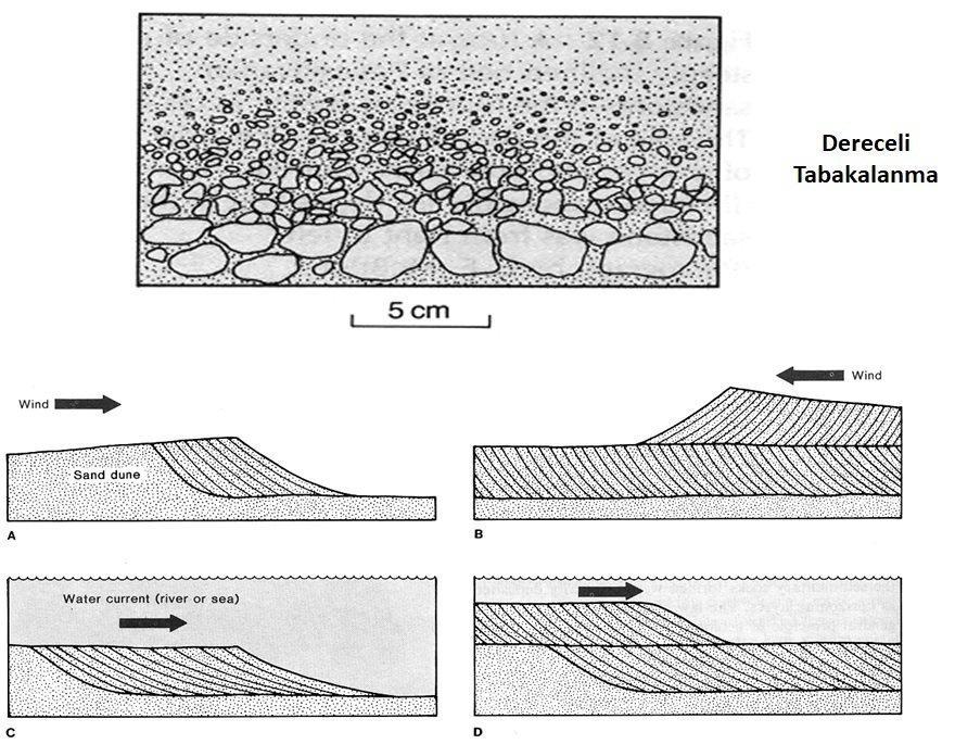 Sedimanter (Tortul) Kayaçlar İle İlgili Geniş Kapsamlı Konu Anlatımı 1 – sedimanter kayaçlarda tabakalanma