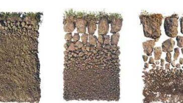 Toprağın Yapısı (Strüktür) Nedir?
