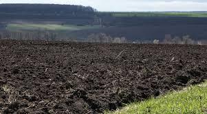 Çernezyom (Kara Topraklar) Nedir? Özellikleri Nelerdir? 1 – ernezyom kara topraklar