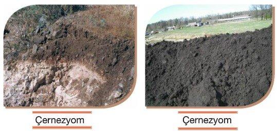 Çernezyom (Kara Topraklar) Nedir? Özellikleri Nelerdir? 3 – ernezyom toprakları
