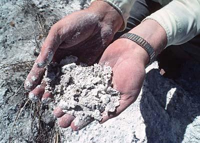 Halomorfik (Tuzlu, Alkali, Sodik) Toprakların Özellikleri 4 – alkali topraklar