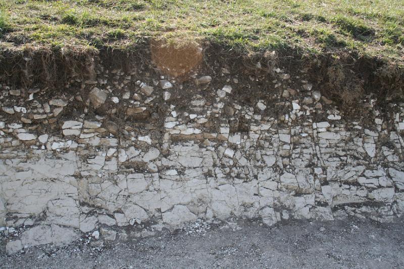 Kalsimorfik (Rendzina, Vertisol, Kahverengi Orman) Topraklarının Özellikleri 1 – rendzina toprakları