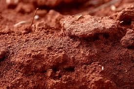 Kırmızımsı Akdeniz Toprağı (Terra Rossa) Nedir? Geniş Kapsamlı Bilgi 1 – terra rossa