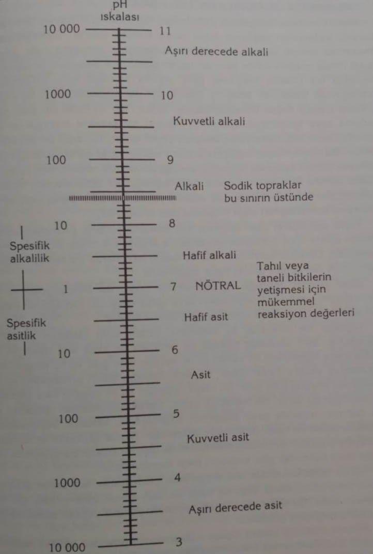 Halomorfik (Tuzlu, Alkali, Sodik) Toprakların Özellikleri