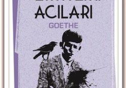 Genç Werther'in Acıları Romanı Özeti